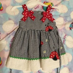 6M Rare Edition Ladybug Dress